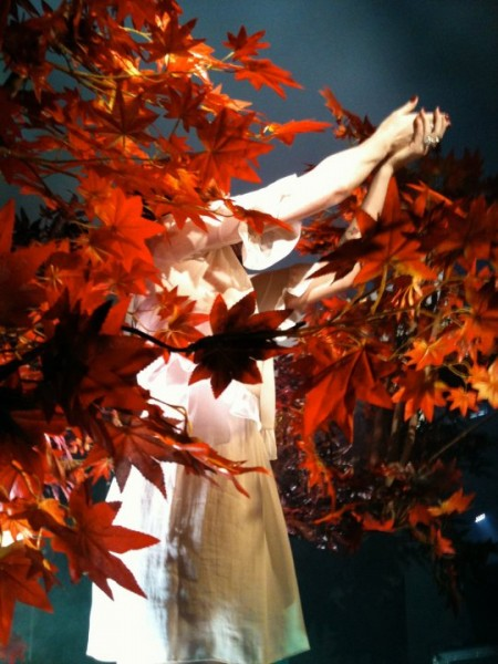 Florence emerging from the rotating orange forest