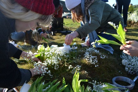 planting the Lily of the Vally and Gyp