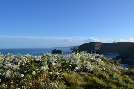 The dressed cliff top